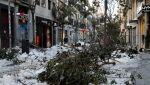 Połamane drzewa na ulicy Fuencarral w Madrycie