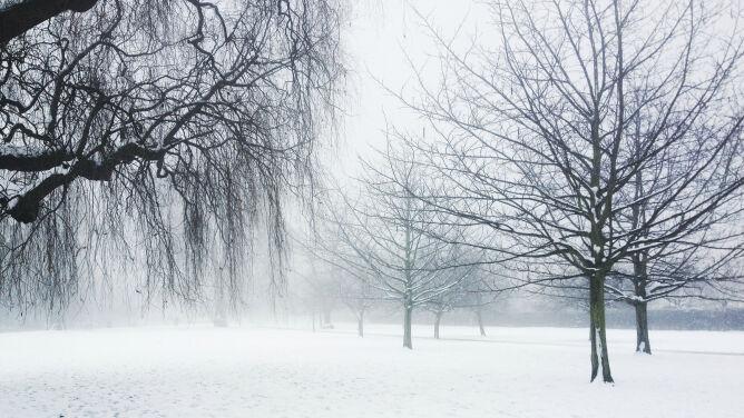 Prognoza pogody na dziś: opady śniegu, ale nie dla wszystkich