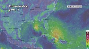 Prognozowane trasy burz tropikalnych Marco i Laura